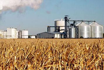 Организация комплекса по строительству завода глубокой переработки зерна