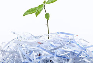 Анализ рынка и оценка перспективы открытия предприятия по производству бумажной продукции из вторичного сырья