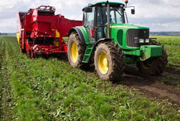 Организация деятельности крестьянско-фермерского хозяйства в Егиндыкольском район